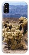 Cholla Cactus Garden IPhone Case
