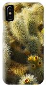 Cholla Cactus Garden Mirage IPhone Case