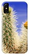 Cholla Cactus In Joshua Tree By Diana Sainz IPhone Case