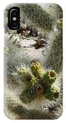 Cholla Garden IPhone Case