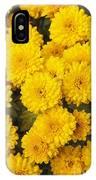 Chrysanthemum 'branhalo' IPhone Case