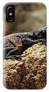 Chucka Walla Basking IPhone Case