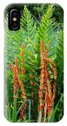 Cinnamon Fern IPhone Case