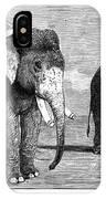 Circus Elephants, 1884 IPhone Case