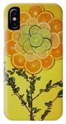 Citrus Fruit IPhone Case