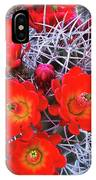 Claretcup Cactus Blooms IPhone Case