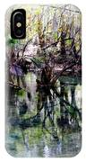 Clear Florida Springs IPhone Case