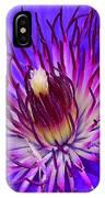 Clematis 1 IPhone Case