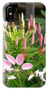 Cleome Named Cherry Queen IPhone Case