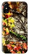 Climbing Color IPhone Case