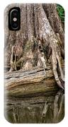 Clinging Cypress IPhone Case