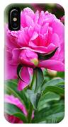 Close Up Flower Blooming IPhone Case