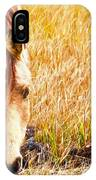 Close Up In The Marsh IPhone Case