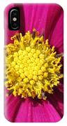 Close Up Of A Cosmos Flower IPhone Case