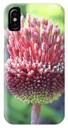 Close Up Of An Ornamental Onion Or Drumstick Allium  IPhone Case