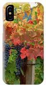 Close-up Of Cabernet Sauvignon Grapes IPhone Case