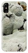 Close Up Of Lichens Commonly Called Rock Moss IPhone Case