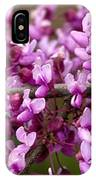 Close-up Of Redbud Tree Blossoms IPhone Case