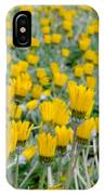 Closed Yellow Daisies IPhone Case