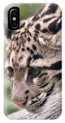 Clouded Leopard Cub IPhone Case