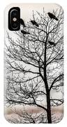Cloudy Day Blackbirds IPhone Case