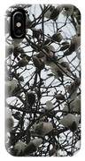 Cloudy Day For Young Magnolias IPhone Case
