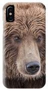 Coastal Brown Bear Closeup IPhone Case