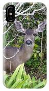 Coastal Deer IPhone Case
