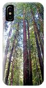 Coastal Redwoods Reach For The Sky In Armstrong Redwoods State Preserve Near Guerneville-ca IPhone Case