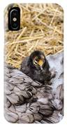 Cochin Hen And Chick IPhone Case