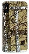 Cold Birds IPhone Case