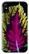 Coleus Leaf IPhone Case