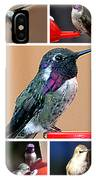 Collage Of Hummers IPhone Case