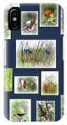 Collage Of Indigos 6 IPhone Case