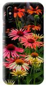 Coloratura IPhone Case