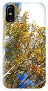 Colorado Aspens And Blue Skies IPhone Case