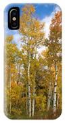 Colorado Autumn Aspens  IPhone Case