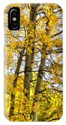 Colorado Fall Aspens 2 IPhone Case