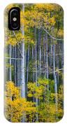 Colorado Fall Color IPhone Case