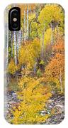 Colorful Autumn Forest In The Canyon Of Cottonwood Pass IPhone Case