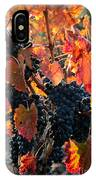 Colorful Autumn Grapes IPhone Case