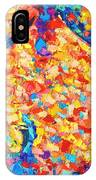 Colorful Bodyscape 1 IPhone Case