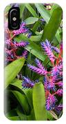 Colorful Bromeliad IPhone Case