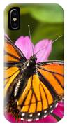 Orange Viceroy Butterfly IPhone Case