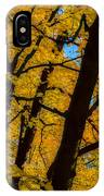 Colorful Canopy IPhone Case