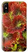 Colorful Coleus IPhone Case