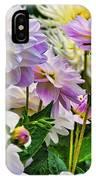 Colorful Dahlia Garden IPhone Case
