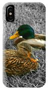 Colorful Ducks IPhone Case