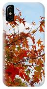 Colorful Fall Leaves IPhone Case