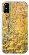 Colorful Fall Trees In Maine IPhone Case